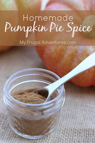 Homemade Pumpkin Pie Spice  Homemade Pumpkin Pie Spice My Frugal Adventures