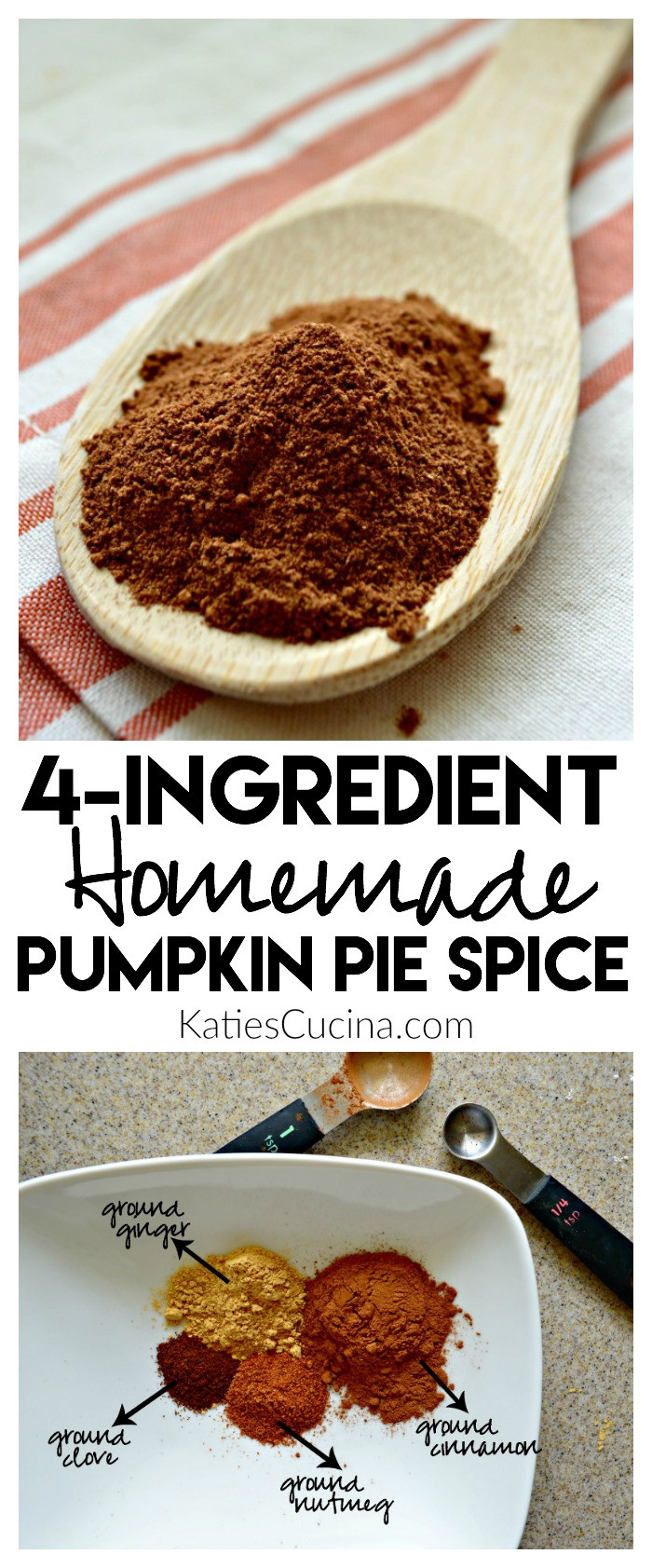 Homemade Pumpkin Pie Spice  Homemade Pumpkin Pie Spice Katie s Cucina
