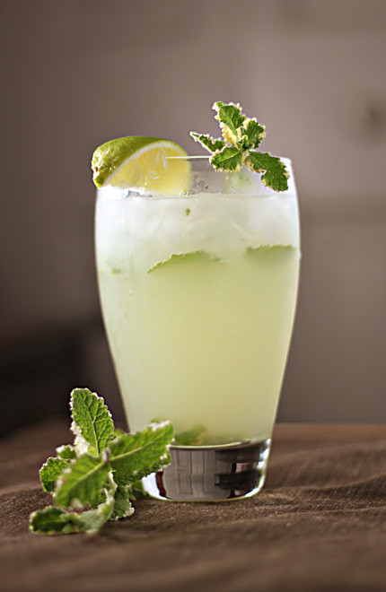 How To Make Mojitos Drinks  How to Make Mojitos with Lime Juice