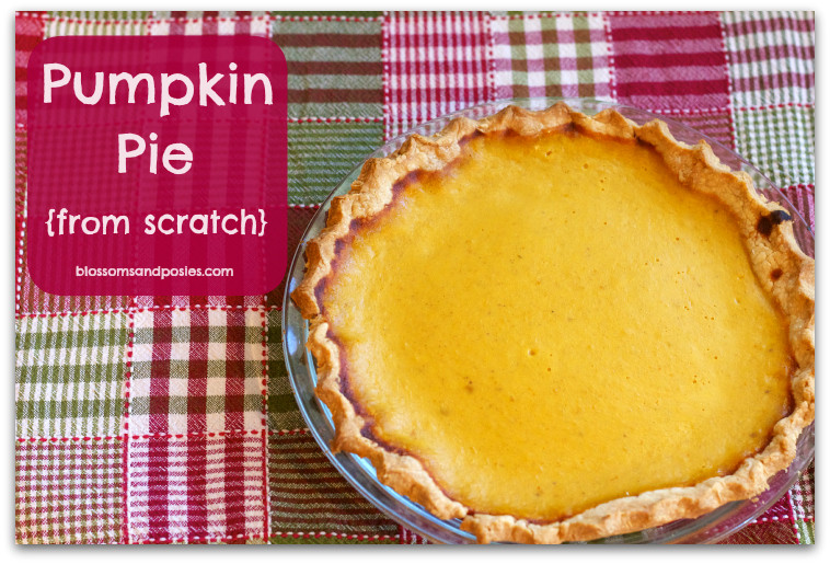 How To Make Pumpkin Pie From Scratch  How to Make Pumpkin Pie from Scratch blossomsandposies