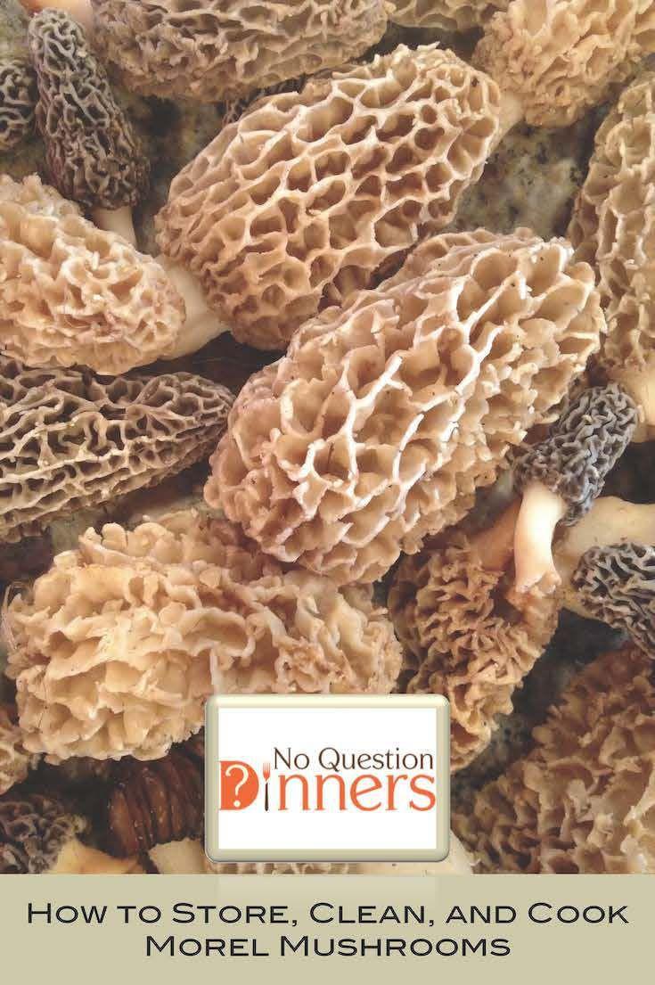 How To Store Morel Mushrooms  13 best Mushroom recipes images on Pinterest