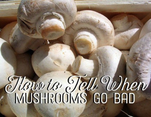 How To Tell If A Potato Is Bad  How to Tell When Mushrooms Go Bad