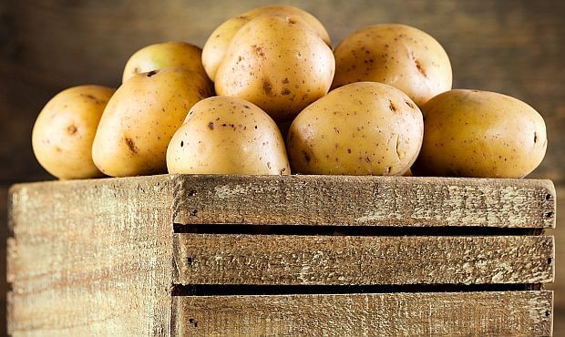 How To Tell If A Potato Is Bad  When do you know that potatoes are bad Nutrition Myths