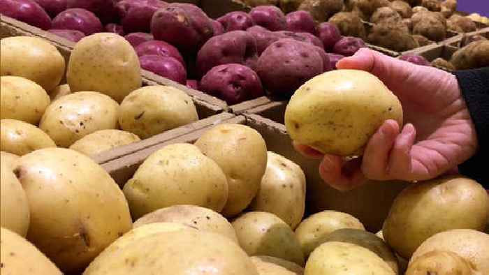 How To Tell If A Potato Is Bad  What s bad is good Potatoes e News Page [Aus] VIDEO