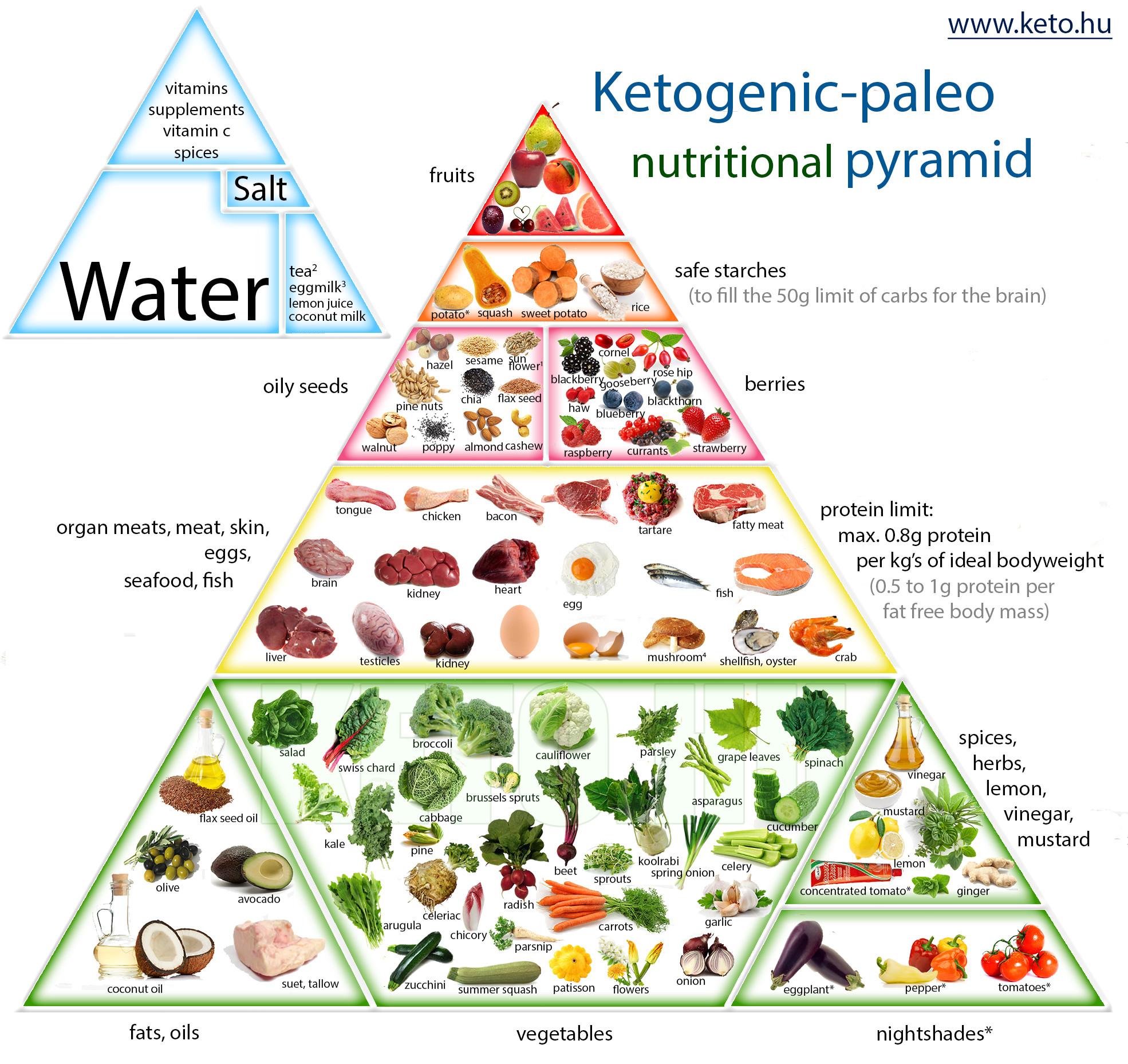 Keto Paleo Diet  ketogenic paleo nutrition pyramid