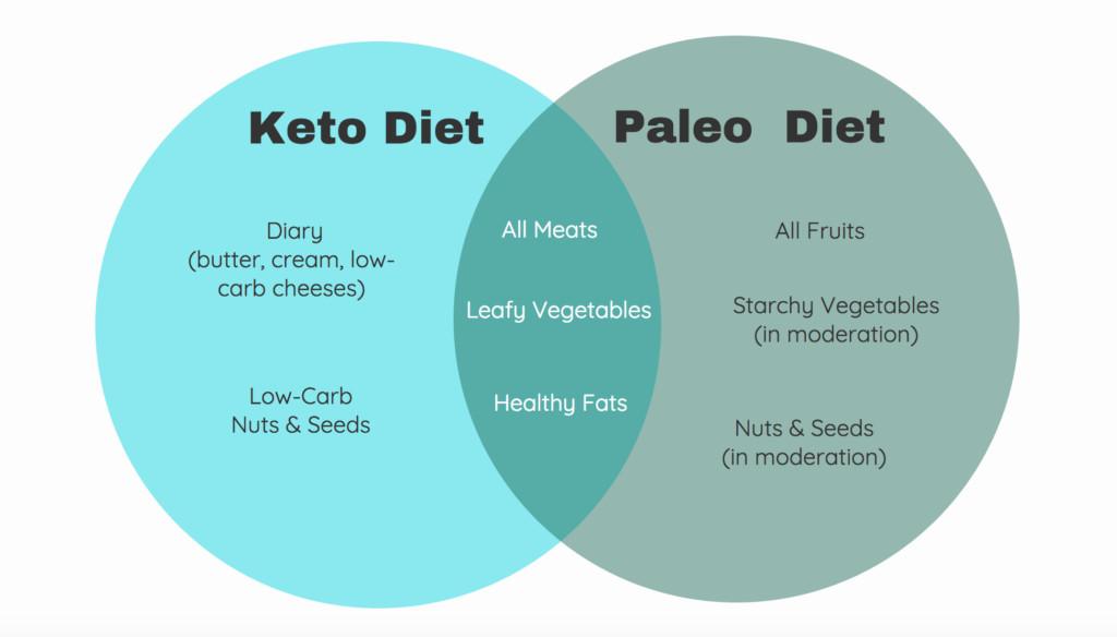Keto Paleo Diet  Paleo vs keto which t is better