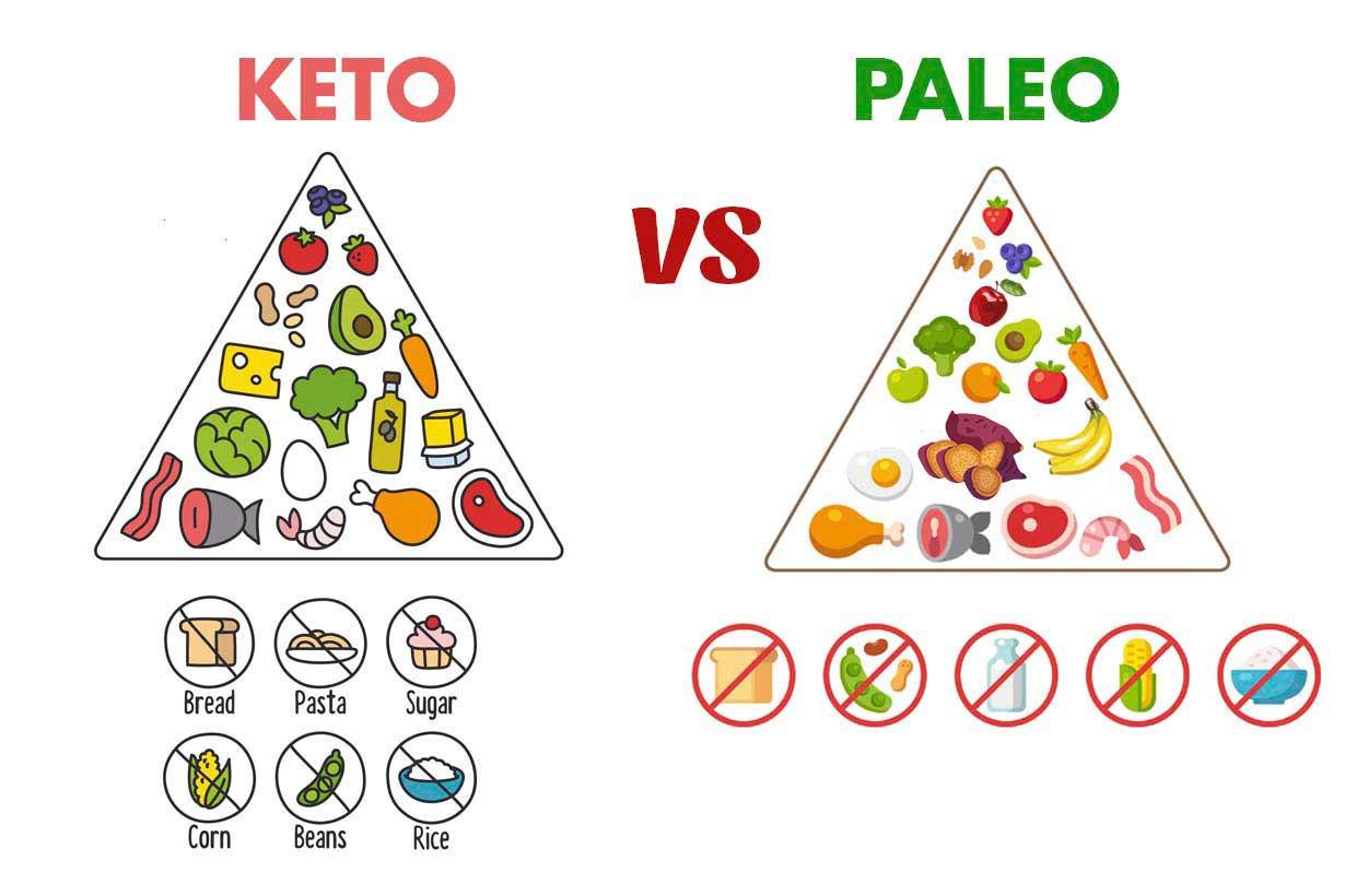 Keto Paleo Diet  Keto vs Paleo How Do These Popular Diets pare