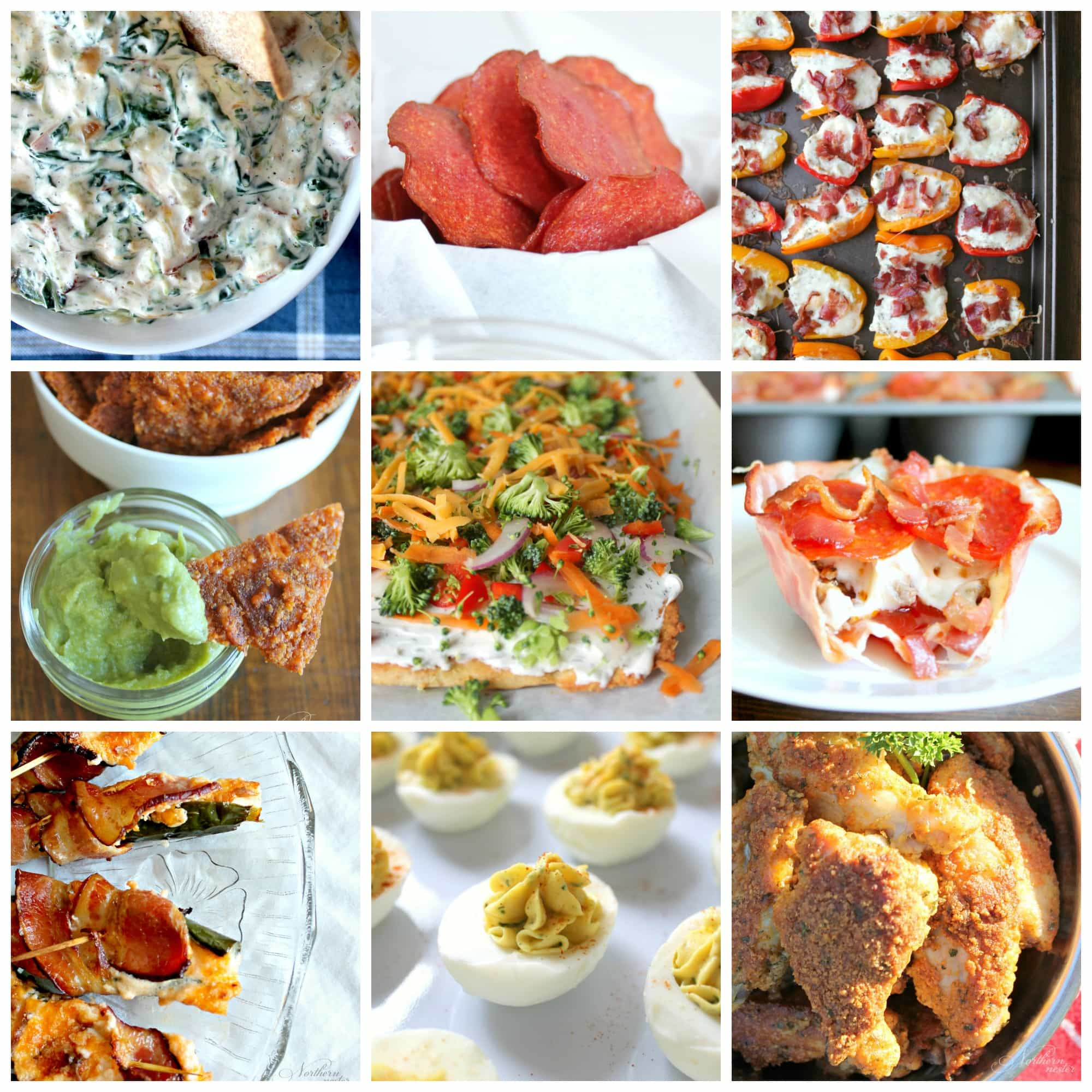 Low Carb Appetizers  10 Amazing Low Carb Appetizers Northern Nester