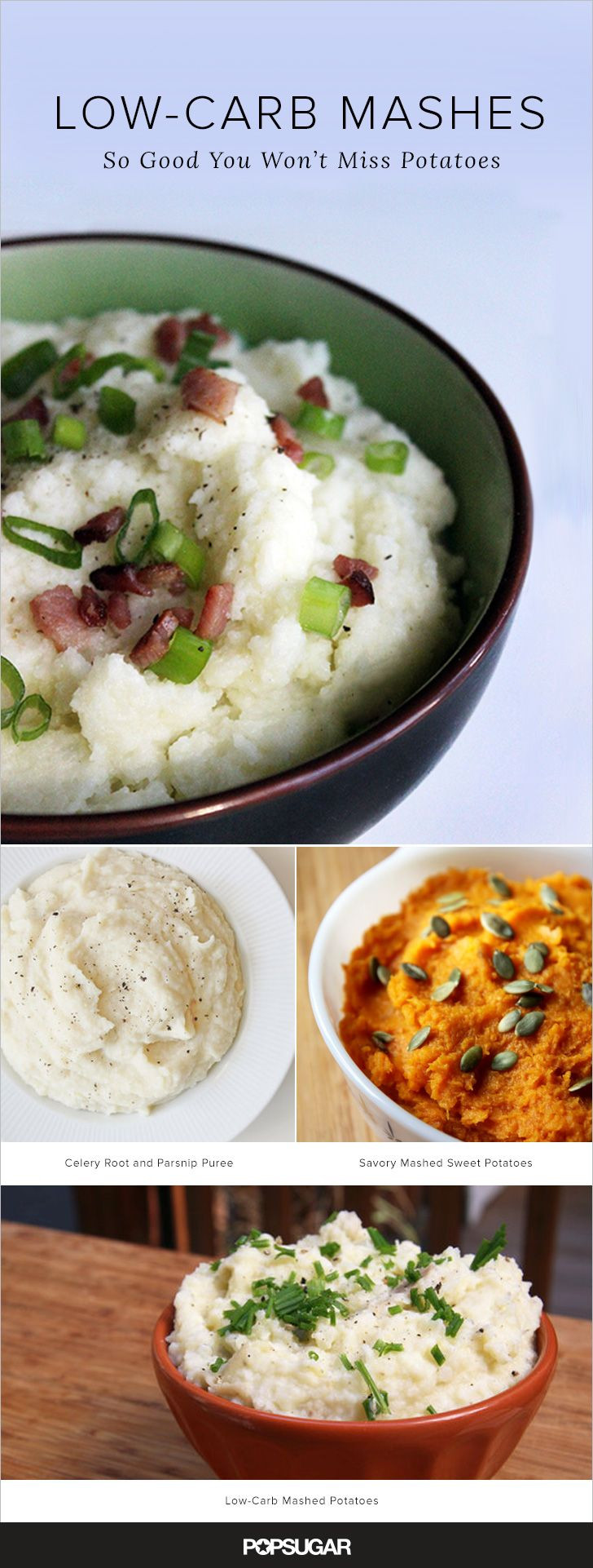Low Fat Mashed Potatoes  Creamy forting and Low Carb Mashed Potato Substitutes
