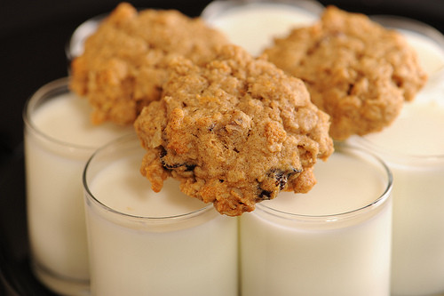 Low Sugar Oatmeal Cookies  Healthy High Protein Low Sugar Oatmeal Cookies
