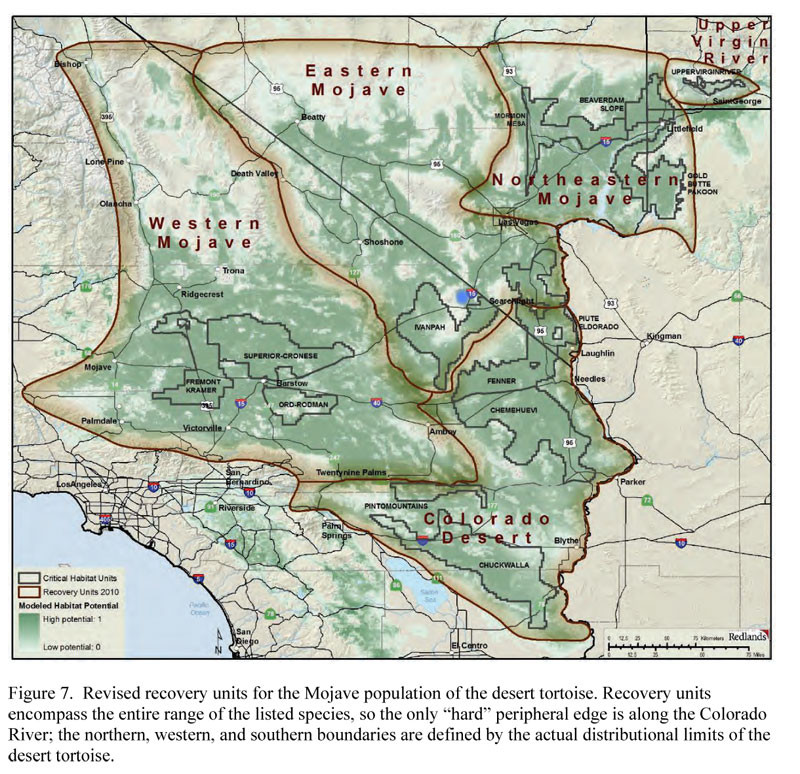 Map Of Mojave Dessert  US Fish and Wildlife Service Revised Desert Tortoise
