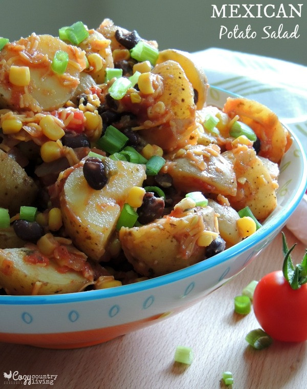 Mexican Potato Salad  10 Yummy Salads for Labor Day