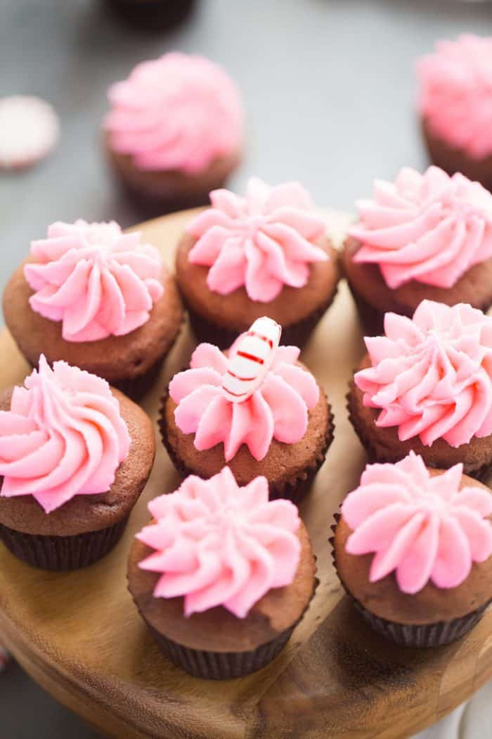 Mini Cupcakes Recipe  Peppermint Mocha Mini Cupcakes Lemons for Lulu