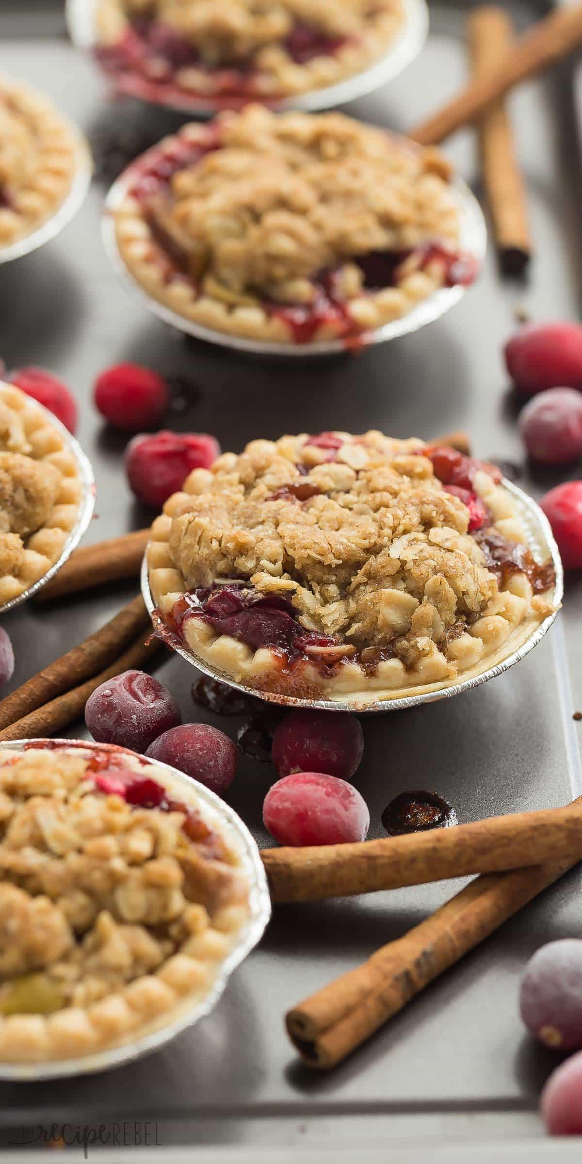 Mini Pie Recipes  Mini Cider Spice Cranberry Apple Pies Recipe