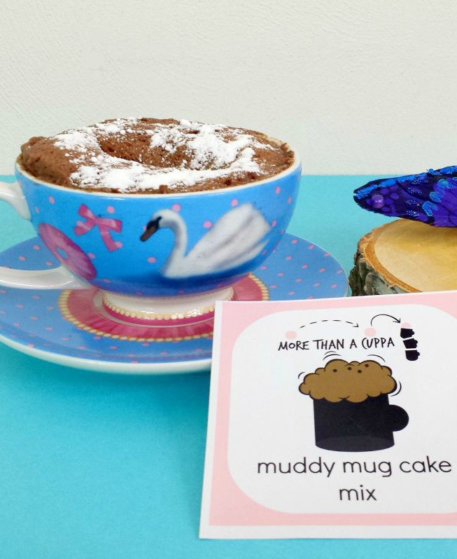 Mug Cake Mix  Mug cake mix More ts