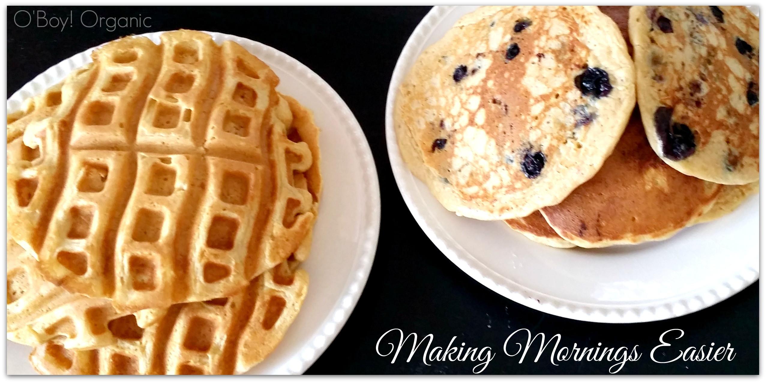 Pancakes And Waffles  Homemade Pancake and Waffle Mix