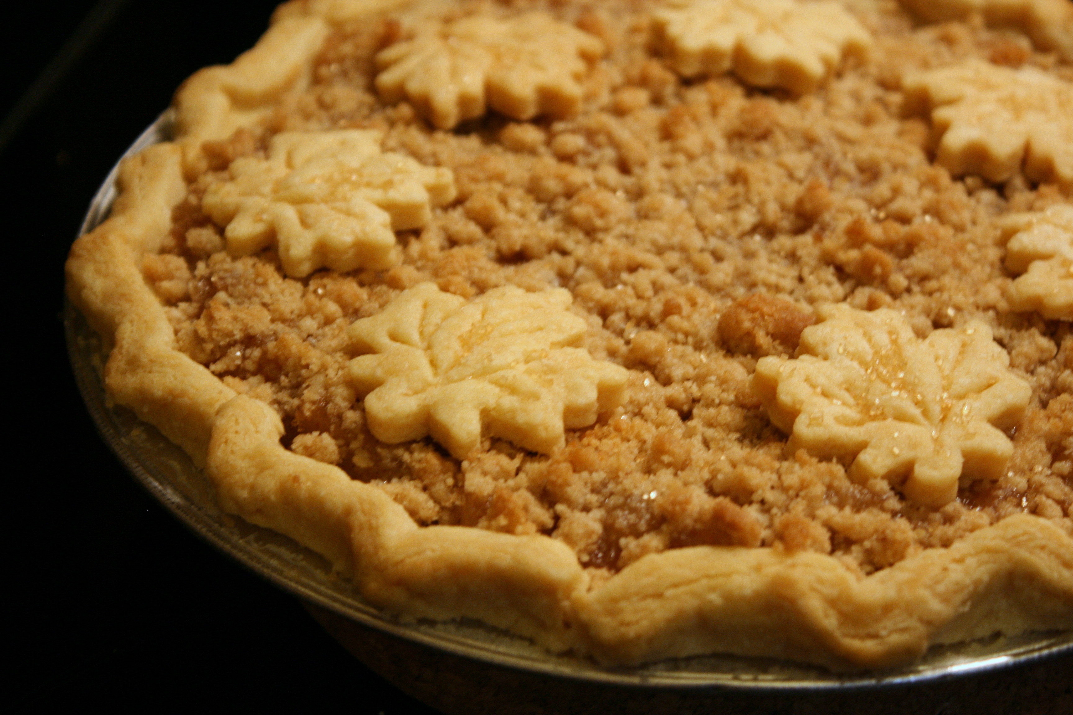 Recipes For Apple Pie  Apples Apples From Scratch Pie Recipe