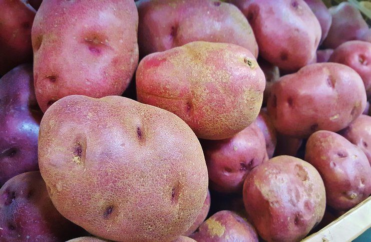 Red Potato Nutrition  Red Potato – Nutrition Facts Health Benefits Side Effects