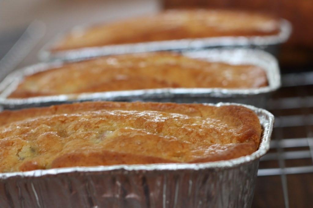 Rhubarb Bread Recipes  Rhubarb Amish Friendship Bread