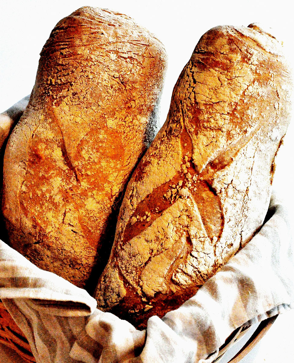 Rustic Italian Bread  Love at first loaf Rustic Italian Bread With Durum