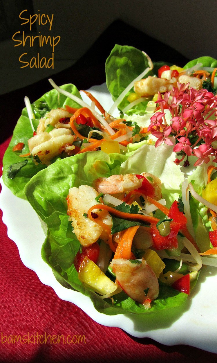 Shrimp Salad Dressings  Bam s Kitchen Spicy Shrimp Salad with Cilantro Lime
