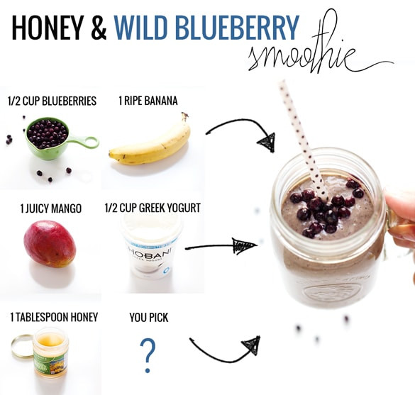Simple Smoothie Recipes  Honey and Wild Blueberry Smoothie Recipe Pinch of Yum