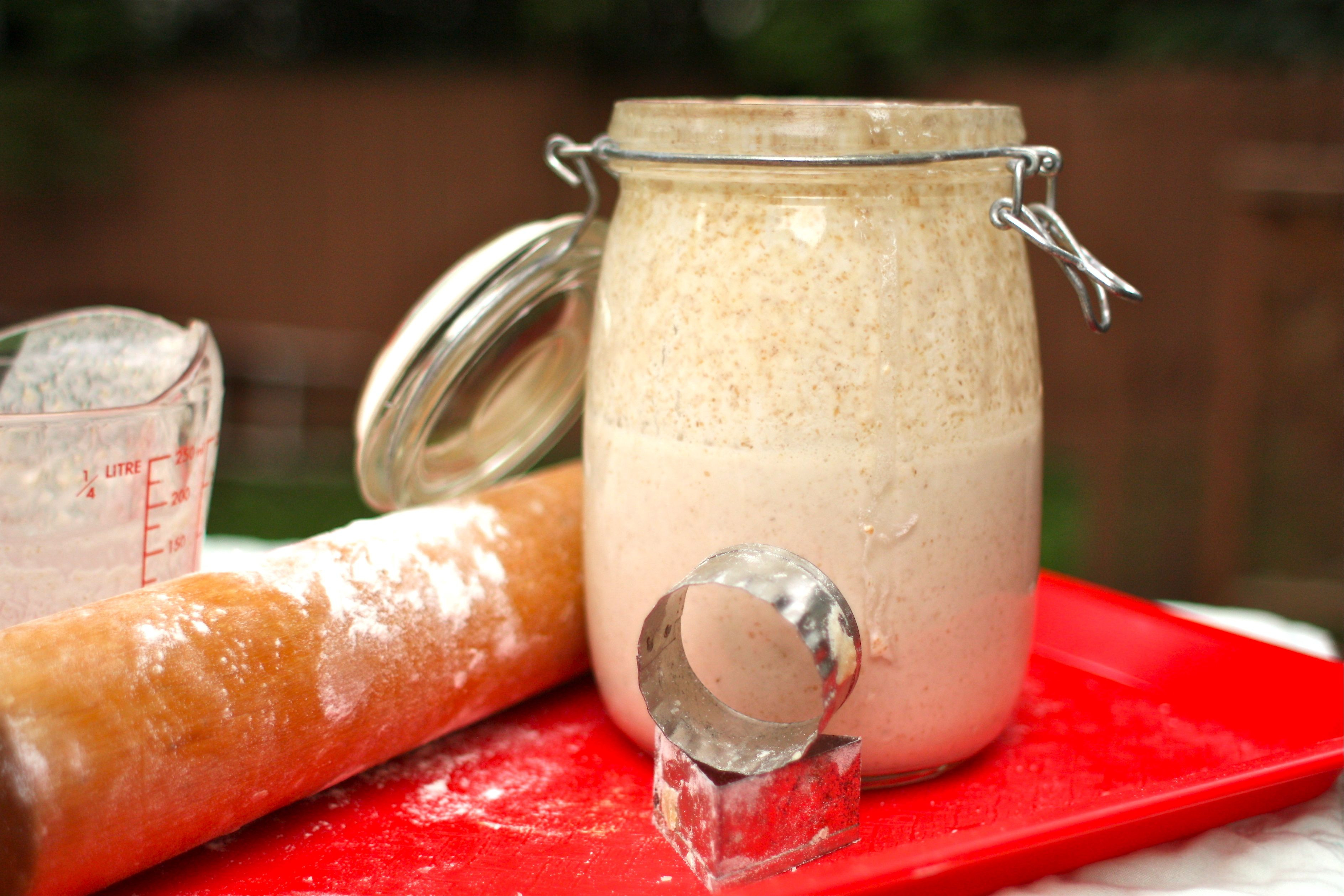 Sourdough Starter Pancakes  Sourdough for Starters Recipe Lazy Sourdough Apple
