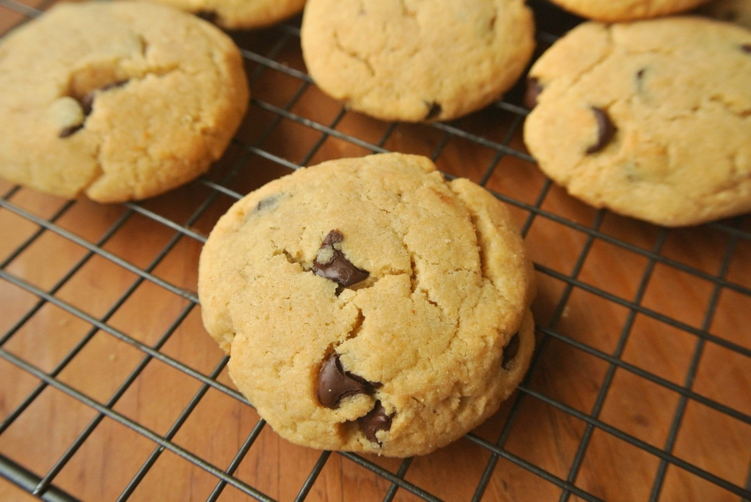Sugar Free Chocolate Chip Cookies  Best Ever Low Carb Chocolate Chip Cookies