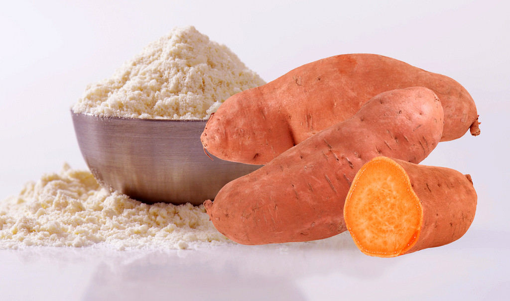 Sweet Potato Powder  University student successfully innovates sweet potato
