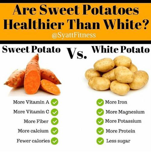 Sweet Potato Vs White Potato  sweet potato vs potato