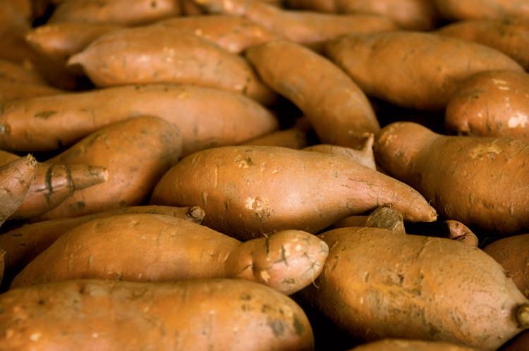 Sweet Potato Vs Yam  Yams vs Sweet Potatoes What s the Difference