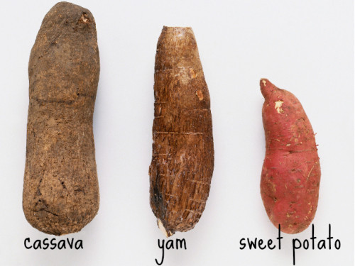 "Sweet Potato Vs Yam  You Say Potato I say ""pa TAW toh"" – Sweet Potato Recipe"