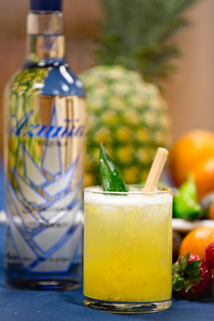 Tequila Mix Drinks  17 Best ideas about Tequila Mixed Drinks on Pinterest