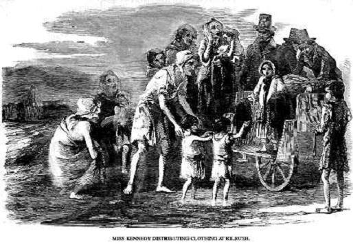 The Great Potato Famine  Scientists study potatos from 1840s famine