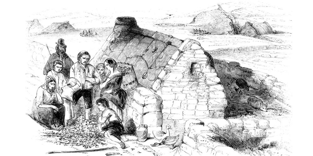 The Great Potato Famine  The Irish Potato Famine fers A Glimpse The Potential