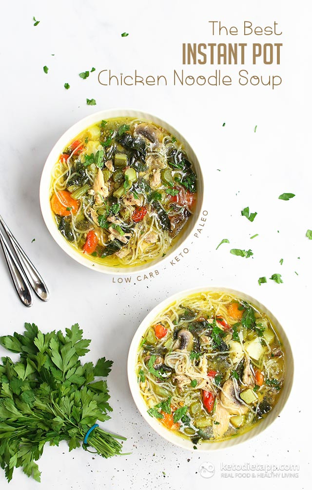 Top Rated Healthy Instant Pot Recipes  The Best Instant Pot Chicken Noodle Soup