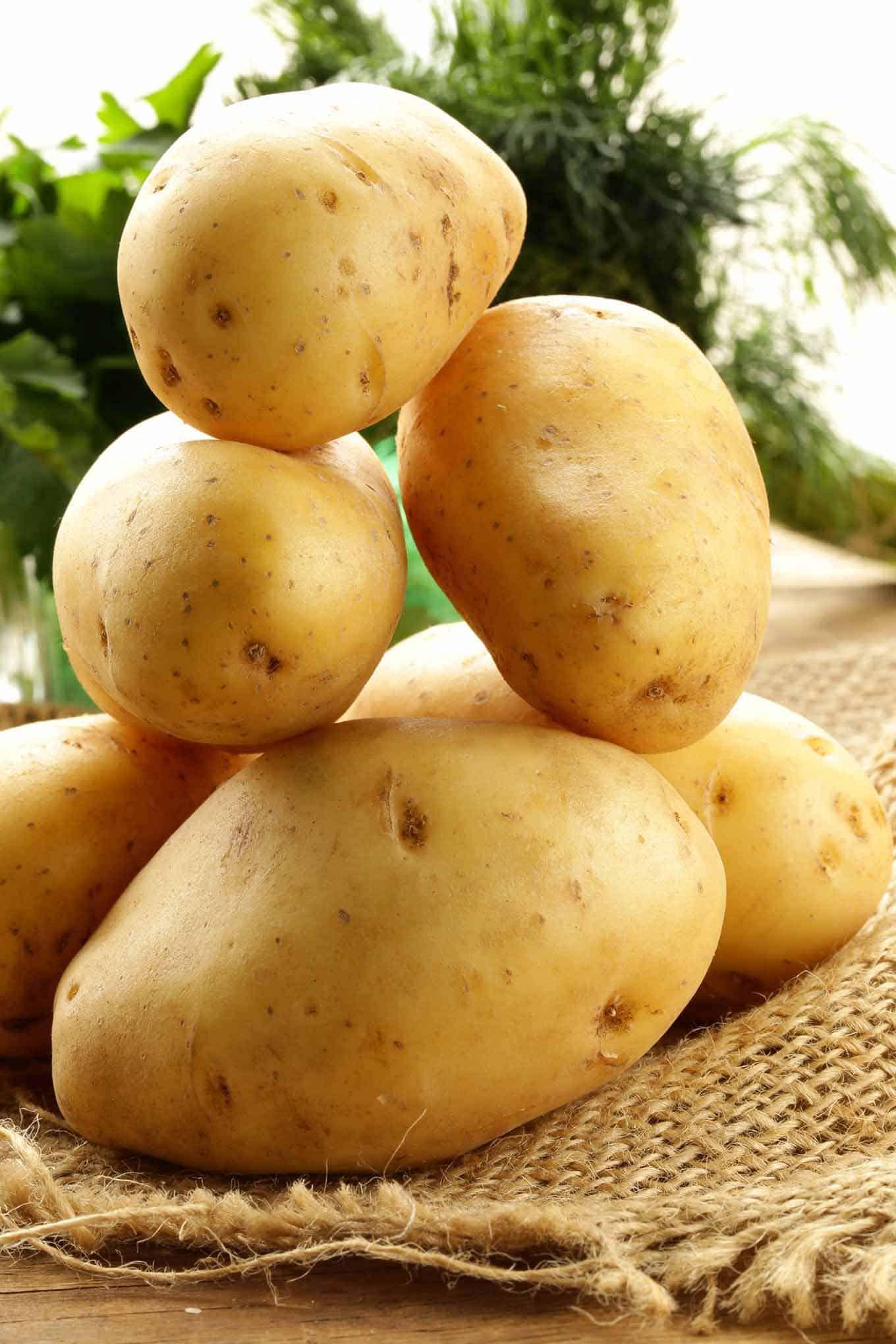 Types Of Potato  Know Your Potato Varieties