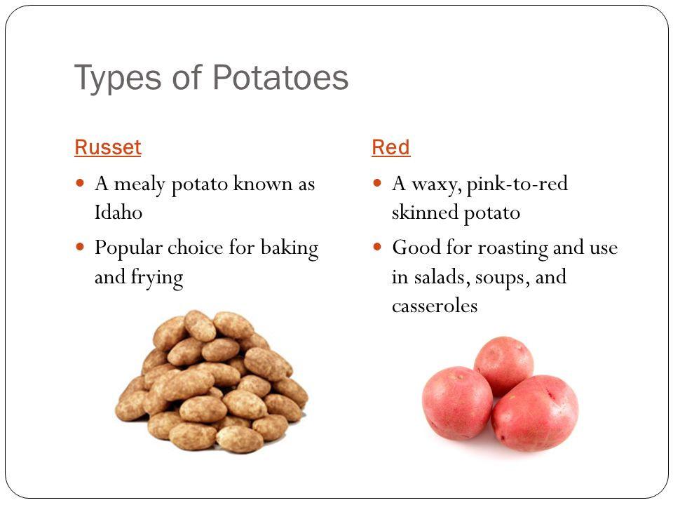 Types Of Potato  Ve able Basics ppt video online