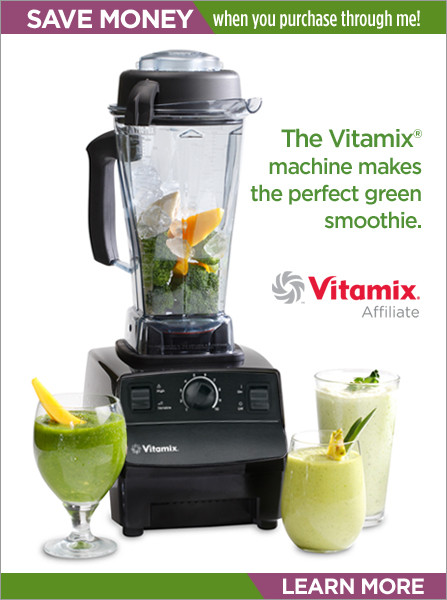 Vitamix Smoothie Recipes  Blender Review Montel Williams Health Master Blender for