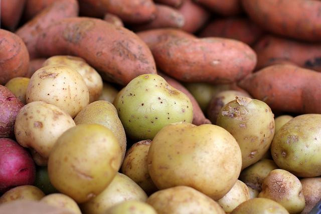 White Sweet Potato  Sweet Potato vs White Potato