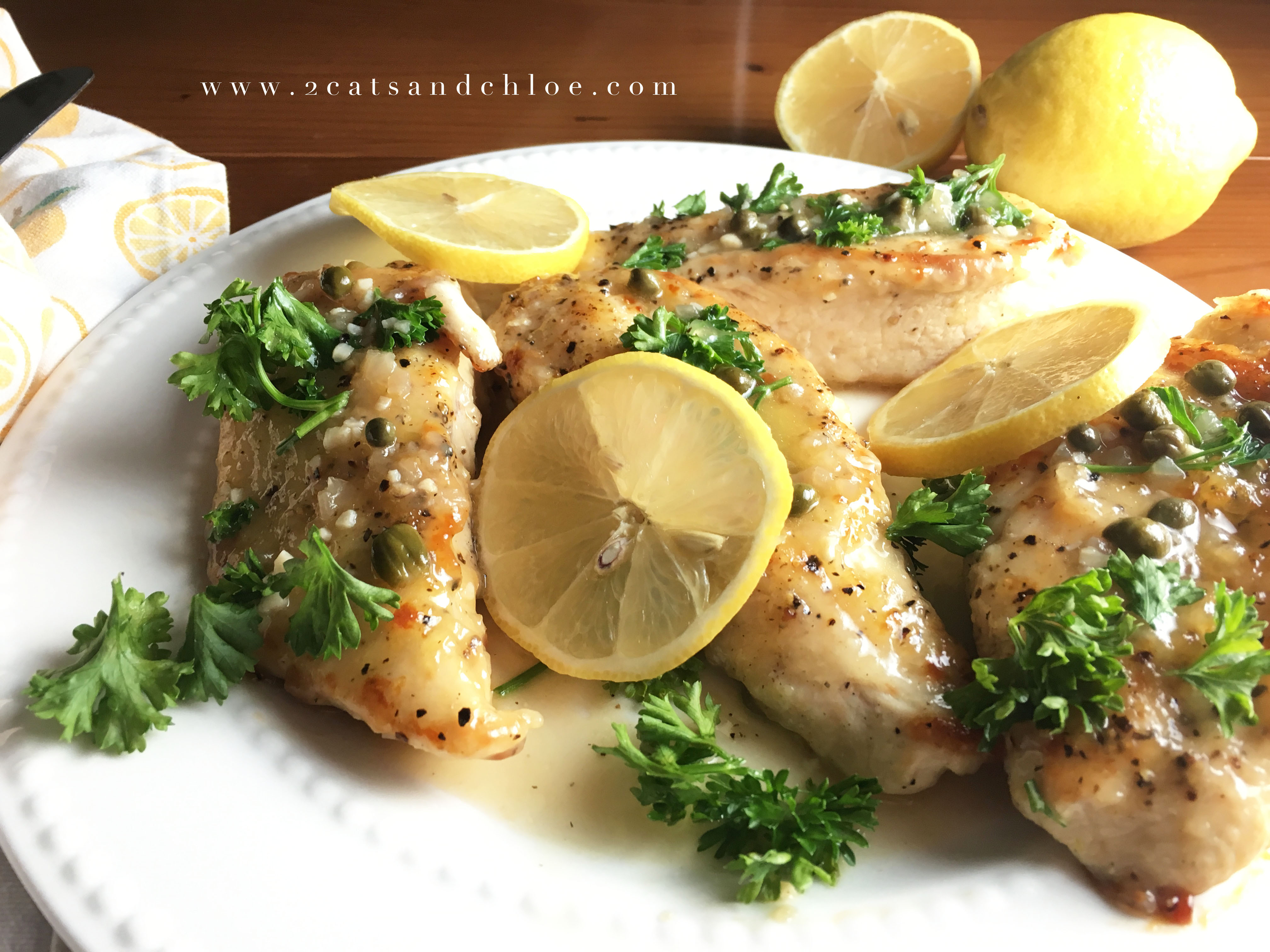 Whole30 Chicken Recipes  Paleo Whole30 Lemon Chicken Dinner 2 Cats and Chloe