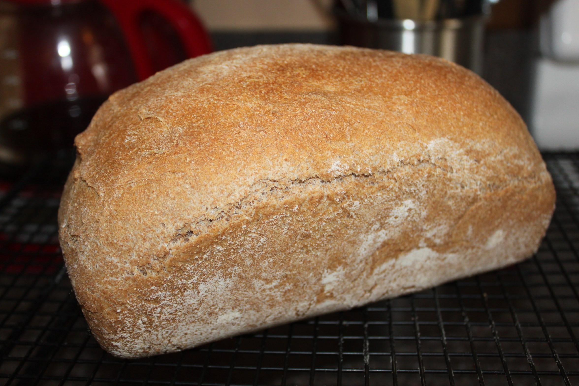 100% Whole Grain Bread  Whole Grain Wheat Bread Recipe Old World Garden Farms
