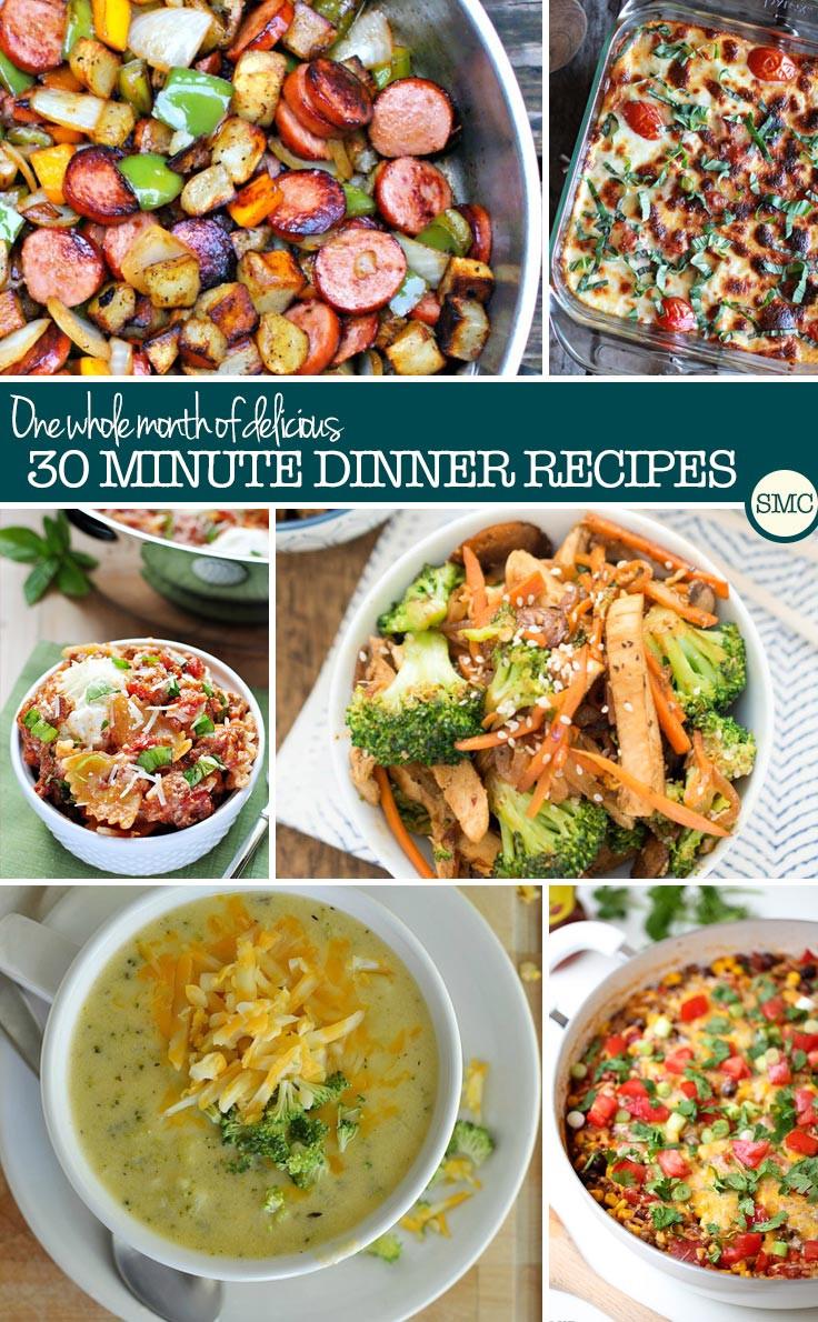 30 Minute Dinners  Meal Planning Made Easy Week 14