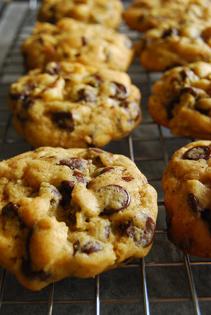 Absolute Best Chocolate Chip Cookies  The Best Chocolate Chip Cookies