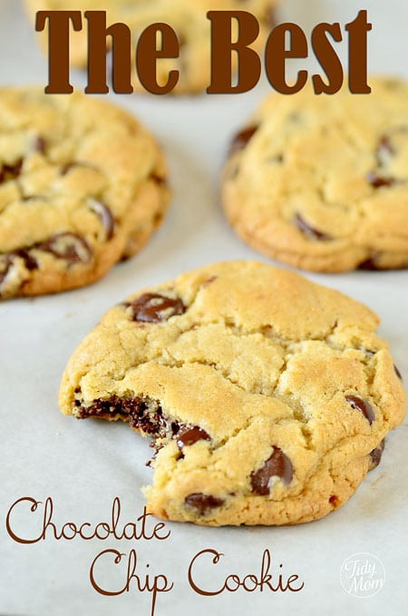 Absolute Best Chocolate Chip Cookies  The Best Chocolate Chip Cookie Recipe