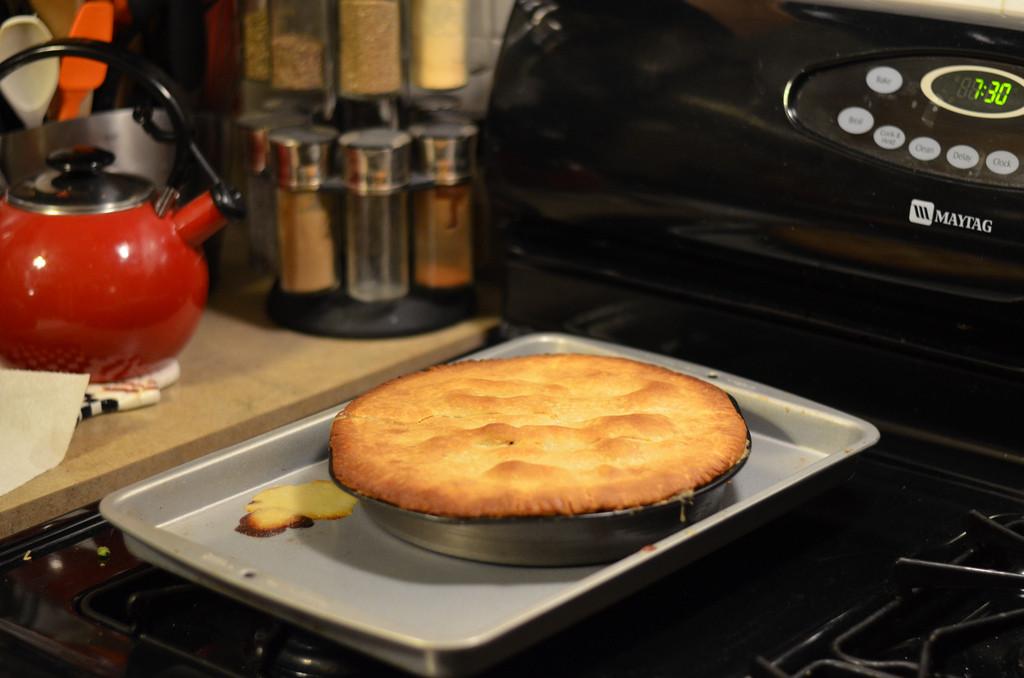 Allrecipes Chicken Pot Pie  Homemade Chicken Pot Pie IX