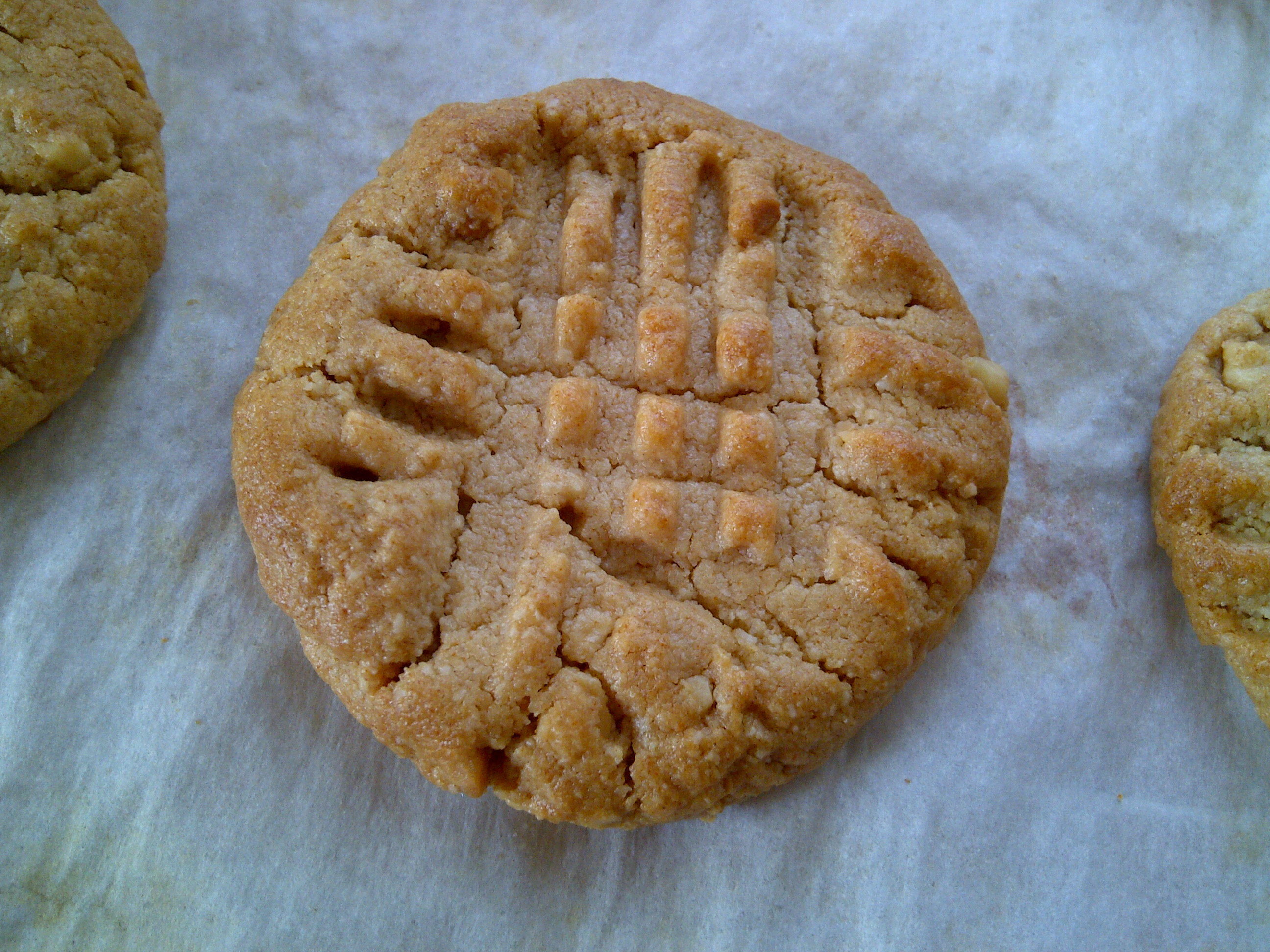 Almond Flour Peanut Butter Cookies  peanut butter cookies