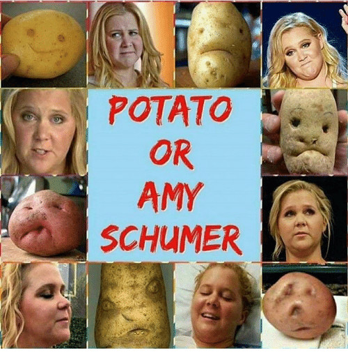 Amy Schumer Or Potato  Funny Amy Schumer Memes of 2017 on SIZZLE