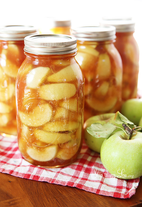 Apple Pie Filling Canned  canned pie filling recipes