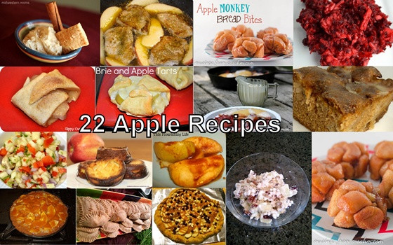 Apple Recipes For Kids  22 Kid Friendly Apple Recipes For Fall The Kid s Fun Review